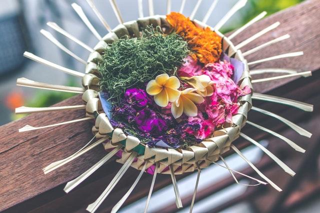תמונת פרחים צבעונית