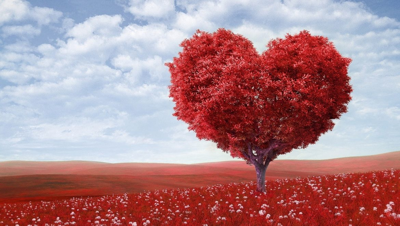 מהי אהבה שבאה מצ'אקרת הלב, ולמה היא אולי הויטמין החסר לזוגיות ולחיזור שלכם