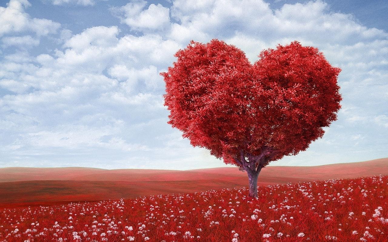 עץ בצורת לב אדום